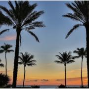 Palm Beach BGSA Supply Chain Conference Benjamin Gordon Cambridge Capital